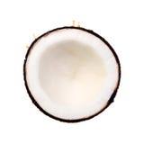 Кокосы изолированные на белой предпосылке Стоковые Фото
