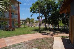 Кокосы Куба Cayo Стоковая Фотография