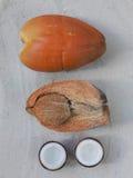 кокосы Стоковые Изображения