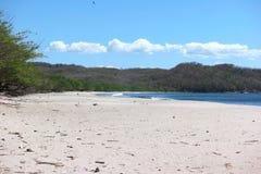 Кокосы Playa, Никарагуа Стоковые Фото