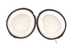 кокос изолировал Стоковое Фото