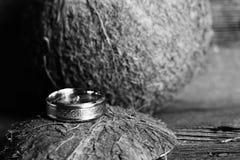 Кокос и обручальное кольцо, экзотическая церемония, творение семьи Стоковое Изображение