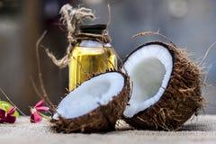 Кокос & кокосовое масло Стоковые Фото
