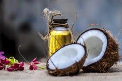 Кокос & кокосовое масло Стоковое Изображение RF