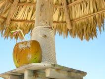 кокос коктеила пляжа Стоковые Изображения RF