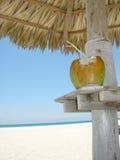 кокос коктеила пляжа Стоковое Изображение RF