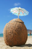 кокос коктеила Стоковое Изображение RF