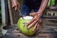 Кокос отрезка рук фермеров Стоковое фото RF
