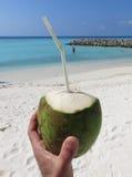Кокос питья на пляже Стоковое Изображение