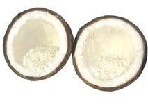 кокос разделяет 2 Стоковая Фотография RF
