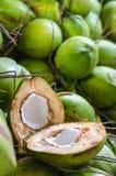 Кокос разделил в половине на куче кокосов Стоковое Изображение RF