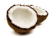 кокос свежий Стоковое Изображение RF