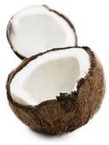 кокос свежий стоковая фотография rf