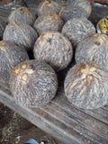 Кокос (тайский) Стоковые Фотографии RF