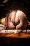 Кокос de Mer стоковое фото rf