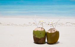 коктеилы пляжа стоковые фото