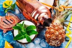 Коктеиль и ингридиенты colada Pina Стоковая Фотография