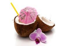 Коктеил кокоса Стоковые Фото