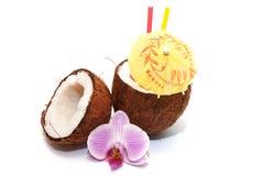 Коктеил кокоса Стоковое фото RF
