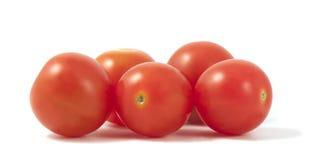 коктеил предпосылки изолировал томаты белые Стоковое фото RF