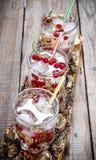 Коктеили ягоды стоковая фотография rf