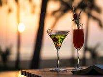 коктеиль захода солнца Стоковое Изображение