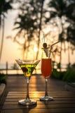 коктеиль захода солнца Стоковая Фотография