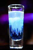 Коктеиль медуз стоковая фотография
