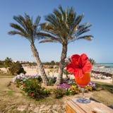 Коктеиль на тропическом пляже моря стоковая фотография
