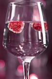 Коктеиль спирта с поленикой Стоковые Изображения