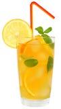 Коктеиль с апельсином и лимонным соком Стоковые Изображения RF