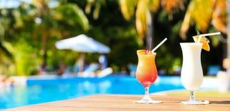 2 коктеиля на роскошном тропическом пляжном комплексе, панораме Стоковые Фотографии RF