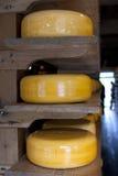 колеса сыра Стоковая Фотография RF