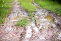 Колесо автомобиля на тинной дороге в сельской местности и глуши Препятствие путешествовать концепция стоковое фото rf