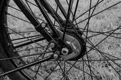 Колесо велосипеда ветерана Стоковое Изображение RF