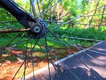 Колесо велосипеда и парк Стоковые Фотографии RF