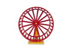 колесо грызунов Стоковые Фотографии RF