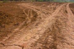 колесо следов на земле Стоковая Фотография