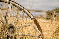 колесо фуры Стоковое Изображение