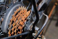 колесо шестерни Стоковое Фото