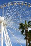 колесо 4 гигантов Стоковые Изображения RF