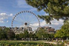 Колесо Ferris на саде Тюильри в Париже Стоковые Фотографии RF