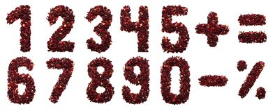 Количество и символ высушенных цветков чая гибискуса на белой предпосылке Стоковая Фотография RF