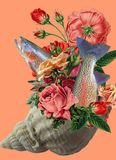 Коллаж искусства, букет роз в seashell бесплатная иллюстрация