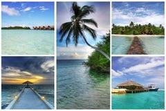 коллаж Мальдивы стоковое фото