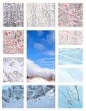 коллаж осматривает зиму Стоковое Фото