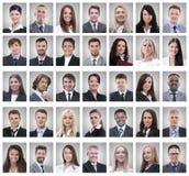 Коллаж портретов успешных молодых бизнесменов стоковая фотография