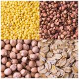 Коллаж различных урожаев Урожаи зерна лежать жизни fo Стоковые Фотографии RF