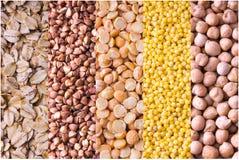 Коллаж различных урожаев Урожаи зерна лежать жизни fo Стоковые Изображения RF
