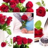 Коллаж роз - влюбленность Стоковые Изображения